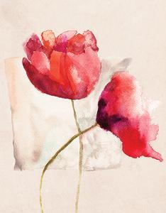 Retro Poppy Watercolor by R. Jersova