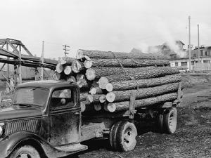 Logging Truck at Sawmill by R. Mattoon