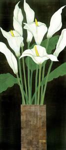 Ivory Calla Lilies by R^ Rafferty