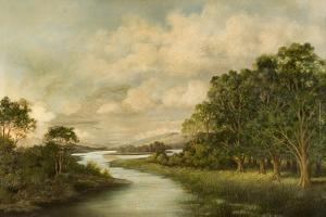 View of North Tyne River by R. Rowell