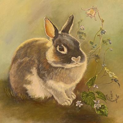 Rabbit in Columbine-Judy Mastrangelo-Giclee Print