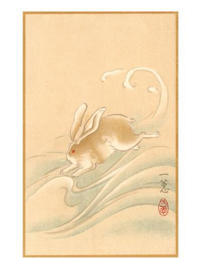 Rabbit Playing in Water--Art Print