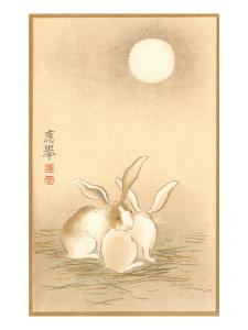 Rabbits and the Moon
