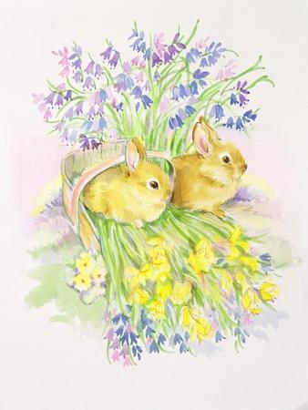 Rabbits in a Basket with Daffodils and Bluebells-Diane Matthes-Giclee Print
