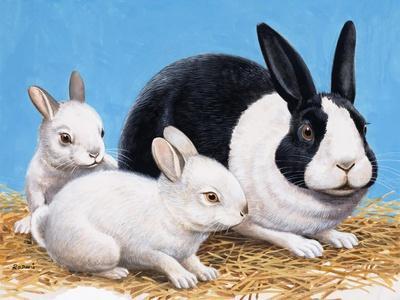 https://imgc.artprintimages.com/img/print/rabbits_u-l-pcj2zv0.jpg?p=0