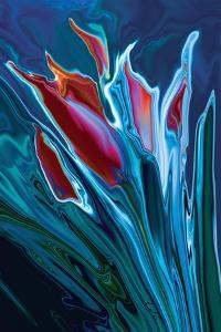 Flower Unknown 2 by Rabi Khan