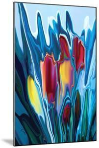 Tulip by Rabi Khan