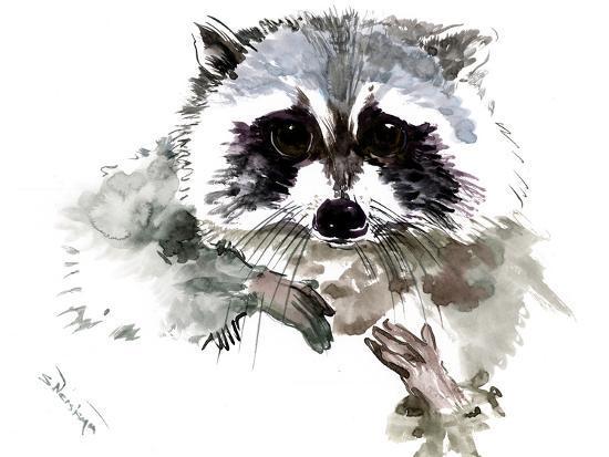 Raccoon 1-Suren Nersisyan-Art Print