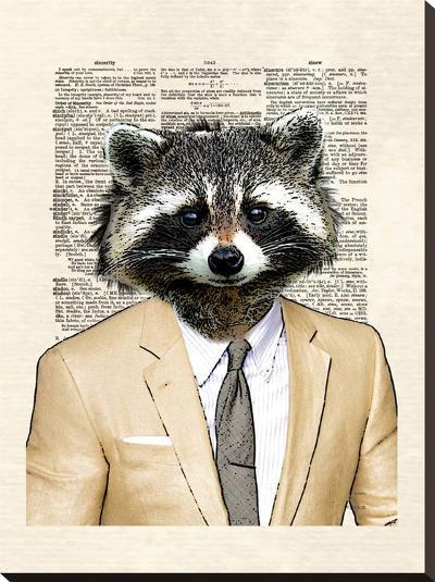 Raccoon-Matt Dinniman-Stretched Canvas Print