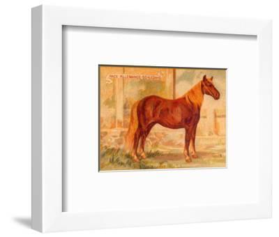 Race Allemande--Framed Art Print