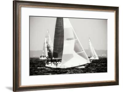 Race on the Chesapeake IV-Alan Hausenflock-Framed Photographic Print