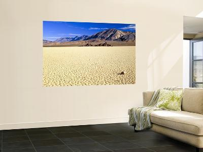 Racetrack and the Grandstand, Cottonwood Mountains, Death Valley National Park, CA-Bernard Friel-Wall Mural