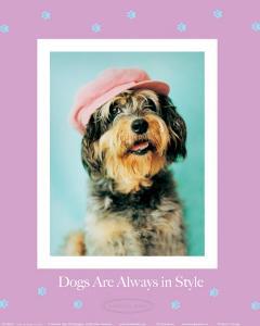 Always in Style by Rachael Hale