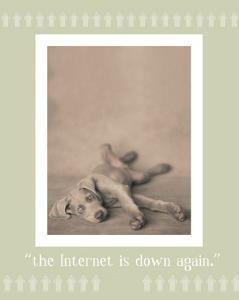 Internet Is Down Again by Rachael Hale