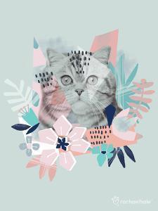 Jungle Cat by Rachael Hale