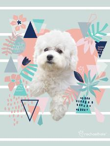 Jungle Puppy by Rachael Hale