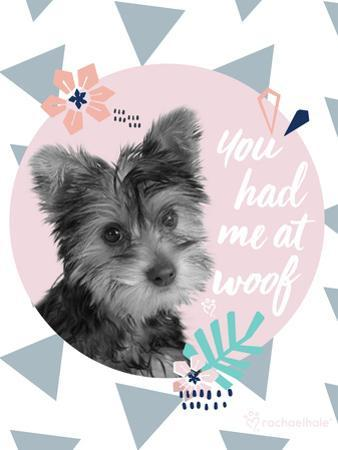 You Had Me At Woof by Rachael Hale