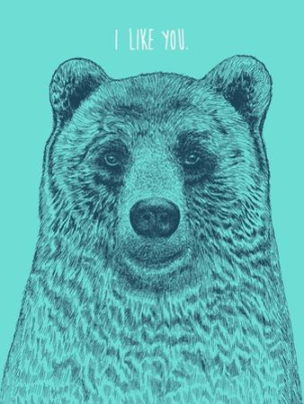I Like You Bear