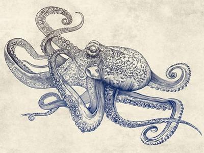 Octoflow by Rachel Caldwell