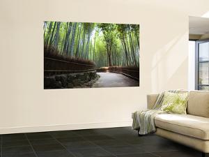 Bamboo Forest Walkway, Arashiyama District by Rachel Lewis