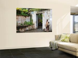 Casa Blanca Museum and Garden (Juan Ponce De Leon's Family Residence) by Rachel Lewis