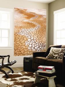 Dry Cracked Earth by Rachel Lewis