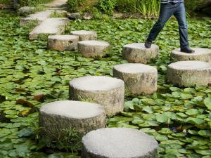 Man Crossing Stepping Stones across Soryu-Ike Pond in Naka Shin'En Garden by Rachel Lewis