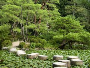 Stepping Stones across Soryu-Ike Pond in Naka Shin'En Garden, Within Heian-Jingu Shrine Complex by Rachel Lewis