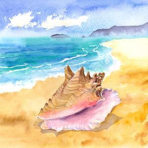 Conch by Rachel McNaughton