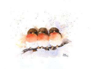 Cute Robins by Rachel McNaughton