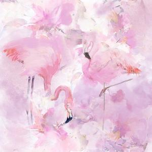 In the Pink by Rachel McNaughton