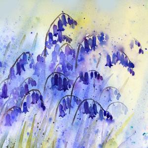 Rainy Bluebells by Rachel McNaughton