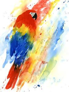 Red Macaw by Rachel McNaughton