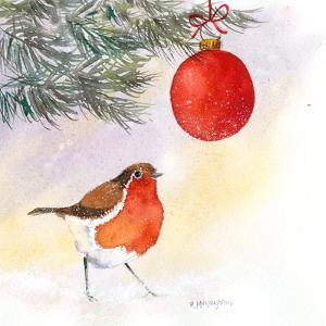 Robin And Bauble by Rachel McNaughton