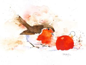 Splashy Robin And Bauble by Rachel McNaughton
