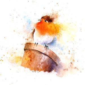 Splashy Robin On Plant Pot by Rachel McNaughton