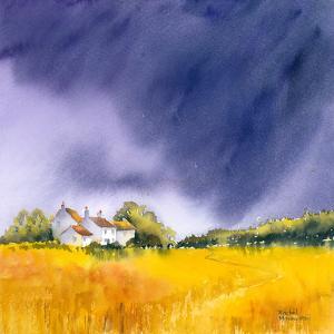Summer Storm by Rachel McNaughton