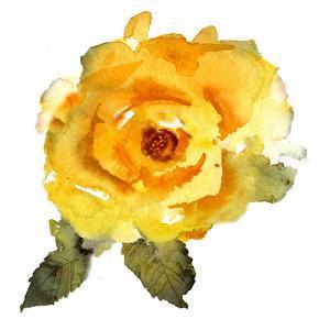 Yellow Rose by Rachel McNaughton