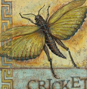 Cricket by Rachel Paxton