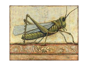 Grasshopper 1 by Rachel Paxton