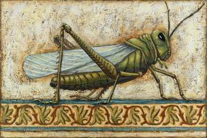 Grasshopper 2 by Rachel Paxton
