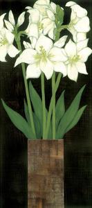 Perfect White Lilies by Rachel Rafferty