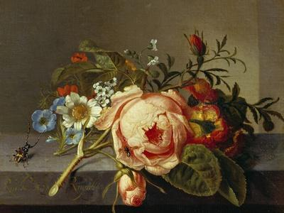 A Branch of Roses with Beetle and Bee, 1741
