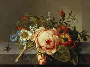 A Branch of Roses with Beetle and Bee, 1741 by Rachel Ruysch