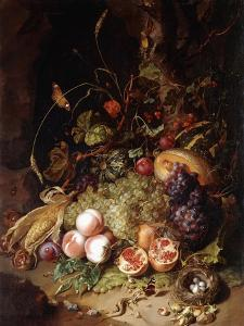 Still-life with Fruit and Insects by Rachel Ruysch