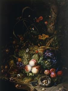 Still Life with Fruit, Flowers, Reptiles and Insects by Rachel Ruysch