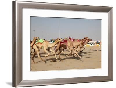 Racing Camels with a Robot Jockeys, Dubai, United Arab Emirates-Philip Lange-Framed Photographic Print