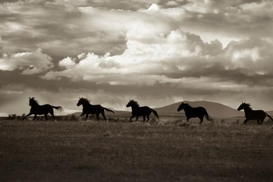Racing the Clouds-Lisa Dearing-Photographic Print