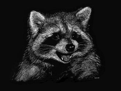 Racoon-Geraldine Aikman-Giclee Print