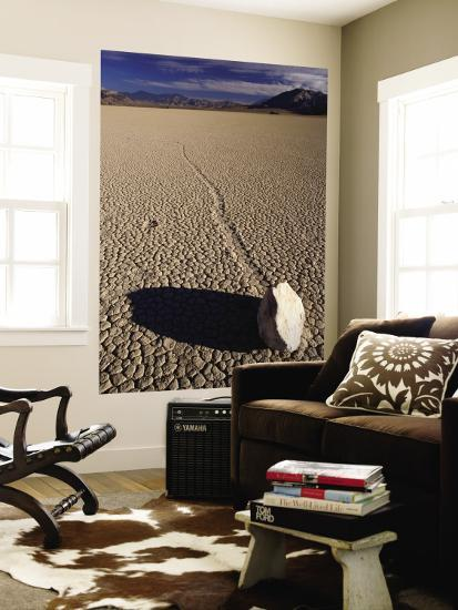 Ractrack Playa Mysterious Racing Rock, Most Likely Driven by Wind When Playa Is Wet-Karl Lehmann-Wall Mural